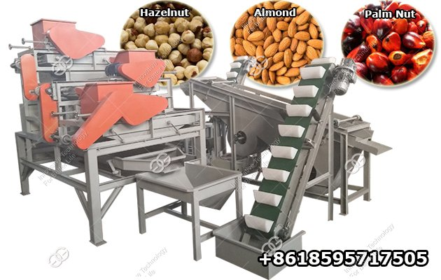 Automatic Palm Almond Shelling Machine Hazelnut Cracking Machine for Sale